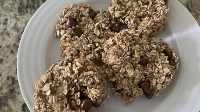 Oatmeal Chocolate Chip Breakfast Cookie